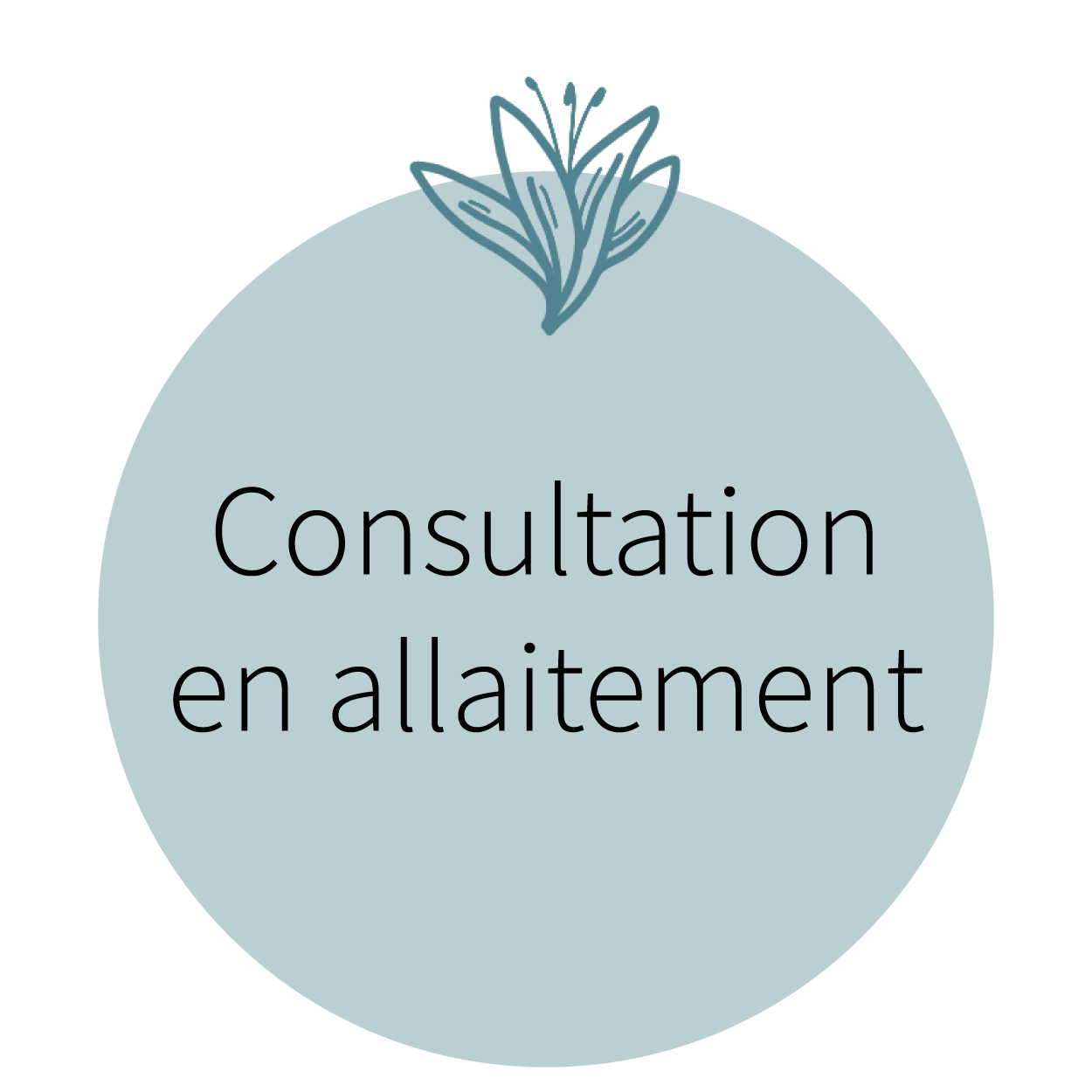 Consultation en allaitement_Plan de travail 1