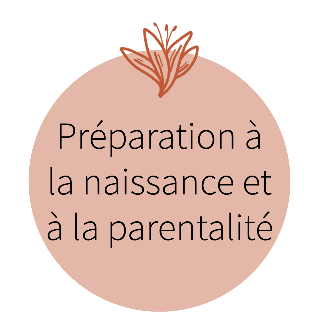 Préparation naissance et parentalité_Plan de travail 1